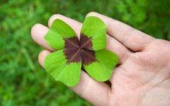 Amuleto da Sorte Para Ganhar na Loteria – Os 7 Melhores