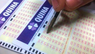 E quais os melhores números para jogar na Quina hoje?